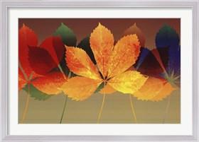 Framed Leaf Dance II