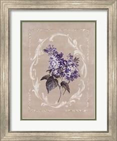 Framed Framed Lilac II