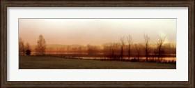 Framed Wait for Winter