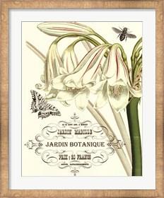 Framed Jardin Botanique I