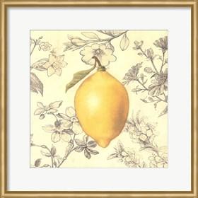 Framed Lemon and Botanicals