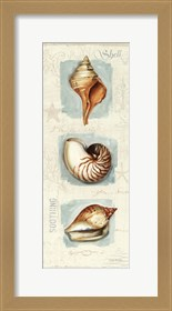 Framed Coastal Jewels Panel II