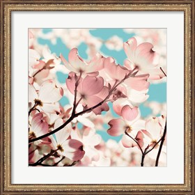 Framed Adorn I