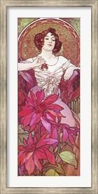 Framed Ruby