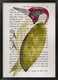 Framed Green Woodpecker