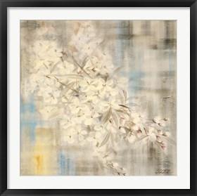 Framed White Cherry Blossom III