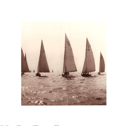 Framed Sailing II Print