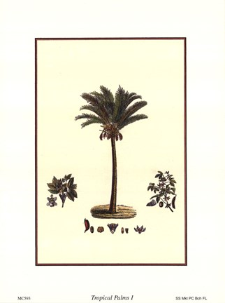 Framed Tropical Palms I Print