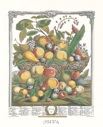 Framed July/Twelve Months of Fruits, 1732 Print