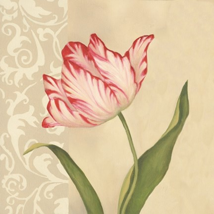 Framed Eloquent Tulip Print