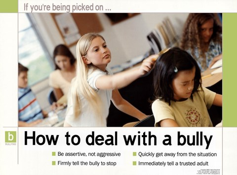 Framed How To Deal With A Bully Print