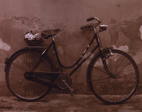 Framed Bicycle with Flowers Print