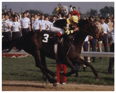 Framed Seattle Slew 1977 Kentucky Derby #410 Print