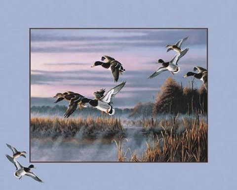 Framed Ducks in Flight Print