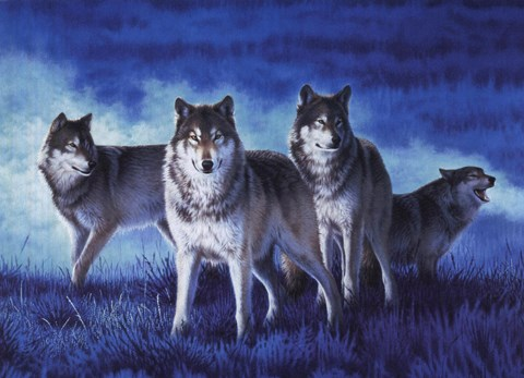 Framed Wolf Group Print