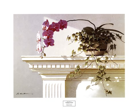 Framed Mantelpiece Orchid Print