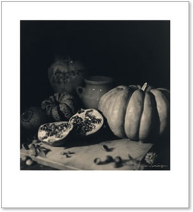 Framed Pumpkin and Pomegranate Print