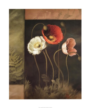 Framed Designer Poppies Print