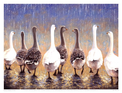 Framed Waddling In The Rain Print
