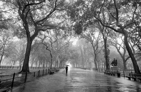 Framed Poet's Walk, New York City Print