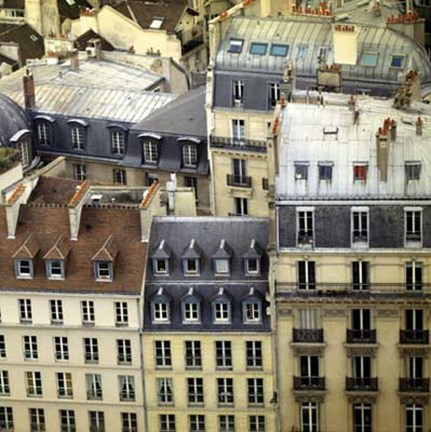Framed Paris Rooftops I Print
