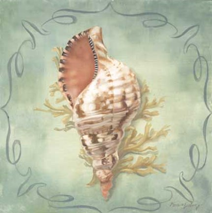 Framed Seashells I Print