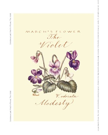 Framed March's Flower, The Violet Print