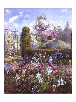 Framed Iris in the Formal Garden Print