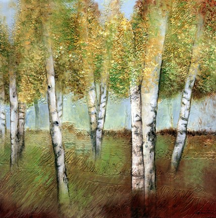 Framed BIRCH WOODS I Print