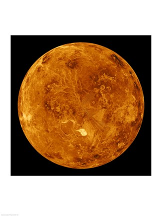 Framed northern hemisphere is displayed in this global view of the surface of Venus Print
