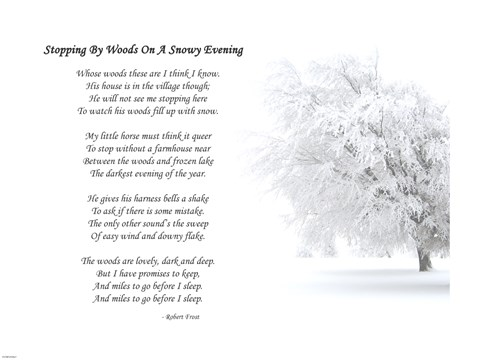 critical analysis robert frost s stopping woods snowy even Stopping by woods on a snowy evening by robert frost research papers examine frost's poems and explore deeper into themes that are originally revealed during a precursory reading.