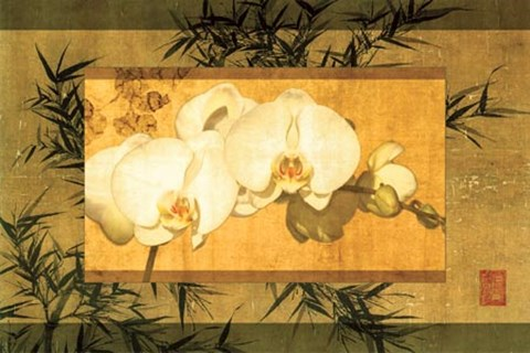 Framed Bamboo & Orchids II Print