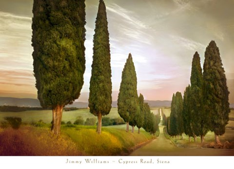 Framed Cypress Road, Siena Print