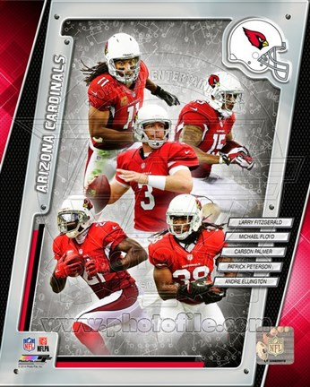 Framed Arizona Cardinals 2014 Team Composite Print