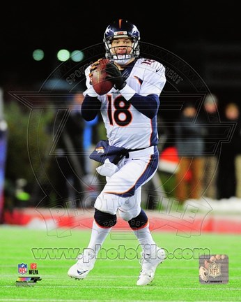 Framed Peyton Manning 2014 Action Print
