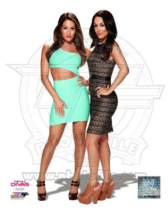 Framed Bella Twins 2014 Posed Print