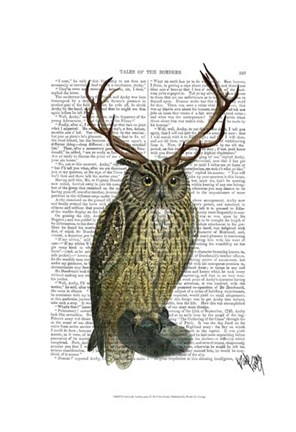 Framed Owl with Antlers plain Print