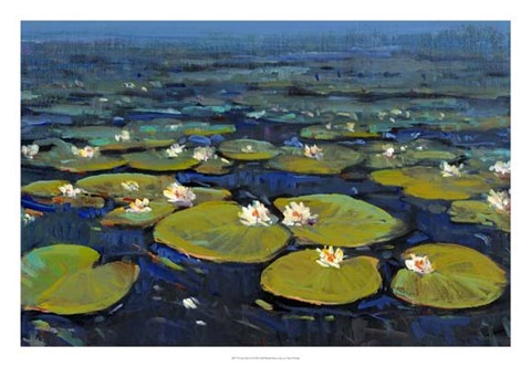 Framed Lily Pads II Print