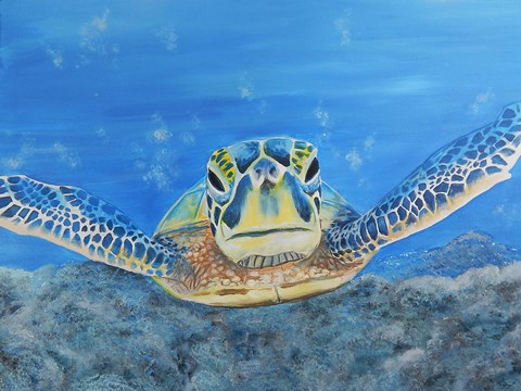 Framed Sea Turtle Print