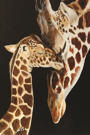 Framed Giraffes First Kiss Print
