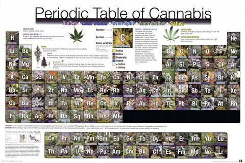 Framed Periodic Table - Cannabis Print