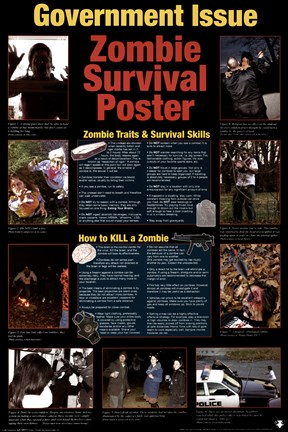 Framed Government Issued Zombie Survival Poster Print