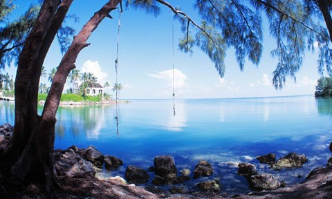 Rope swing over water florida keys art by panoramic for Swing over water