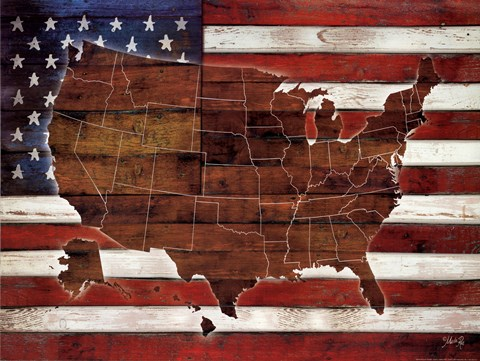 Framed American Flag USA Map Print