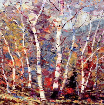 Framed Birch Colors 2 Print