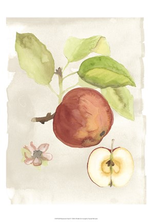 Framed Watercolor Fruit IV Print