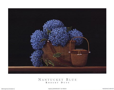Framed Nantucket Blue Print