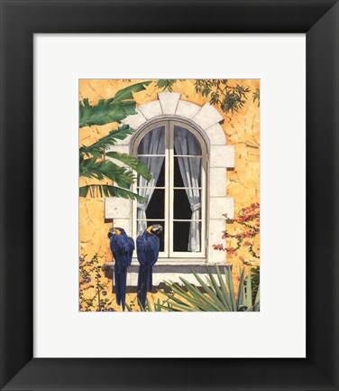 Framed Parrots with a View II Print