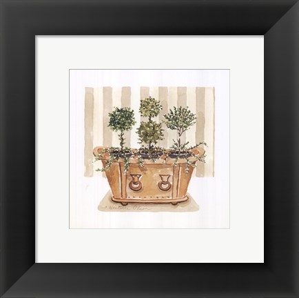 Framed Topiary Tub Print