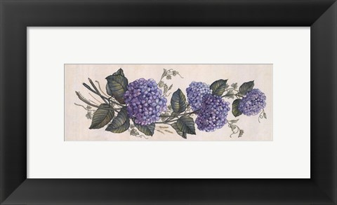 Framed Purple Passion II Print